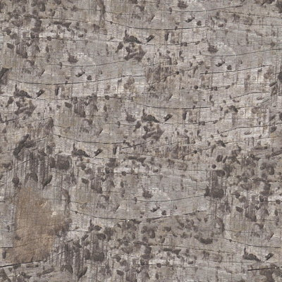 Gallery For > Prison Wall Texture Prison Wall Texture